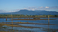 Koksilah River mud flats in Cowichan Bay with Mount Prevost in the distance