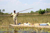 William poles a Mokoro carrying  our camp supplies