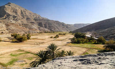 A broad wadi which is a fertile oasis