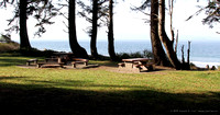 Picnic tables in day use area along beachfront