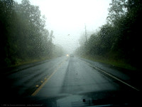 Rain on Highway 11 between Volcano and Hilo