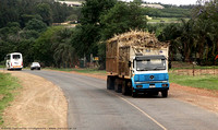 Sugar cane truck on the highway
