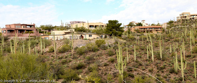 JoeTourist: Tucson &emdash; Houses and cactus in Sundance Estates