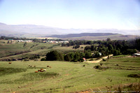 Wide open vistas with the Drakensberg Mountains in the distance