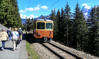 Our group walking the alpine trail from Mürren to Grutschalp with the train running beside the trail