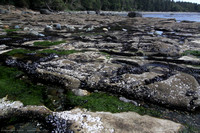 Tidal pools among the Sandstone rock