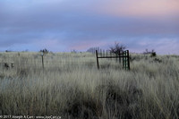 Ranch land grass and a fenceline in the early morning light