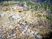 Aerial views of the Okavango Delta